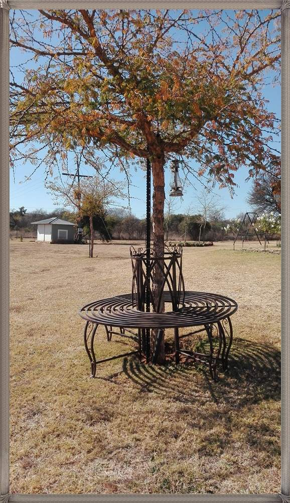 tree-lovers-bench