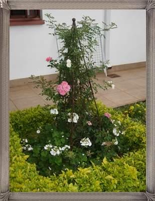 garden-obelisk