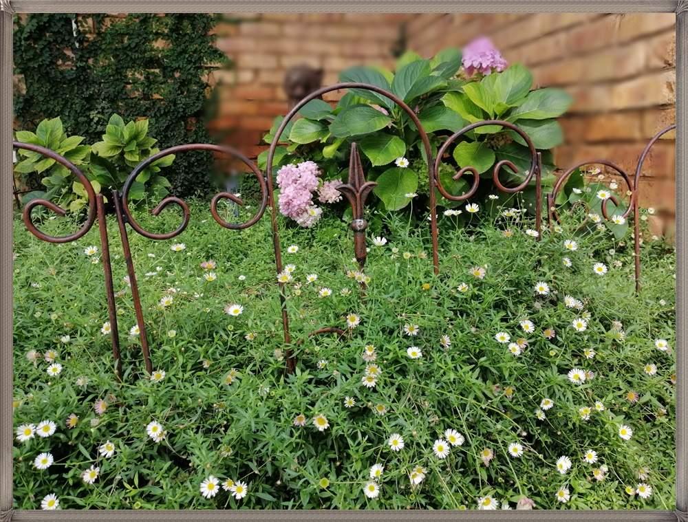 garden-fencing